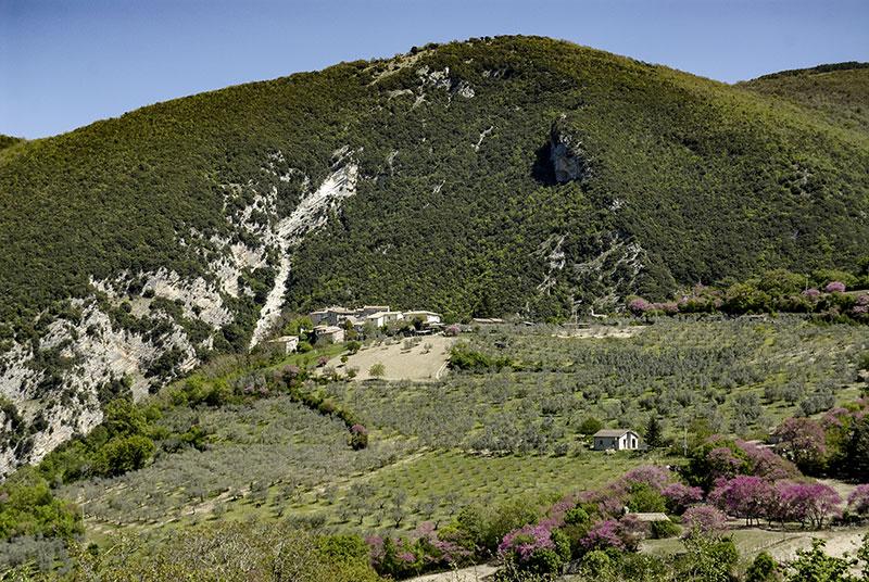 Paesaggio di Castellonalto